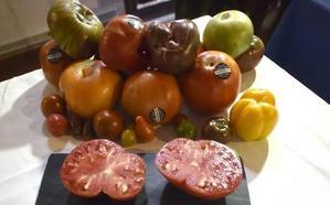 Cata, concurso y subasta del tomate Huevo de Toro este jueves en Coín