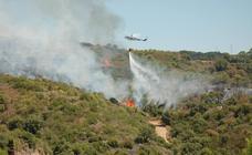 Un incendio en Estepona obliga a desalojar a 50 personas