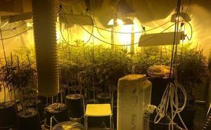Precintan dos clubes de cannabis de Benalmádena por tráfico de drogas