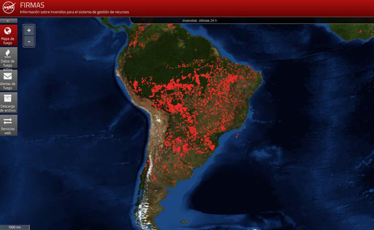 Los incendios azotan la Amazonia, el pulmón de la Planeta