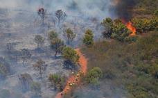 Estepona incluirá una partida económica en el presupuesto de 2020 para reforestar la zona afectada por el incendio
