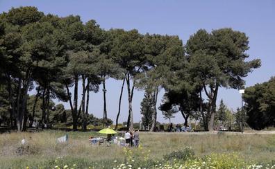 La mayoría de los grandes municipios de Málaga suspenden en zonas verdes