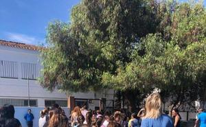 El curso comienza en Estepona tras un centenar de actuaciones en los colegios