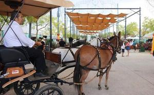 El Ayuntamiento rechaza colaborar económicamente en la organización de la Goyesca