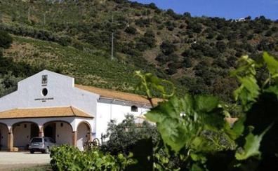El Ayuntamiento inicia los trámites para un camping vinculado al cultivo de la vid al norte de Olías