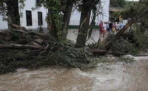 Podemos ve «insuficientes» las ayudas anunciadas por la Junta e insiste en la declaración de zona catastrófica por la gota fría