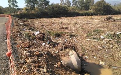 Toneladas de fango, cañas y basura taponan un brazo del Guadalhorce