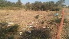 El Ayuntamiento de Málaga retirará las toneladas de fango y residuos que taponan el Guadalhorce