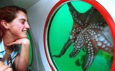 Marbella acoge este lunes el primer congreso de turismo espacial y subacuático