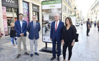 Una exposición en la calle Larios da visibilidad al trabajo de la investigación sobre el cáncer