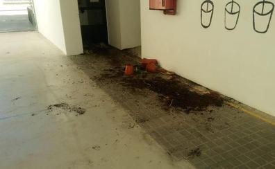 Denuncian actos vandálicos en el interior de un colegio en Torre del Mar