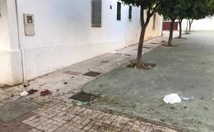 Falta de limpieza y civismo en la zona de Carranque