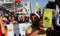 En imágenes, la manifestación celebrada este jueves en Madrid bajo el lema 'Precios justos para un olivar vivo'