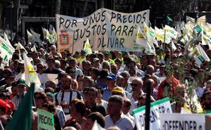 Los olivareros reclaman en Madrid mecanismos para paliar la «crisis tremenda» del sector