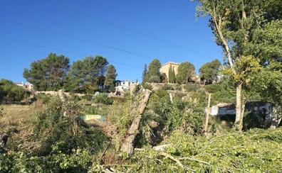 Polémica por una tala de árboles en la zona del arroyo de las Culebras