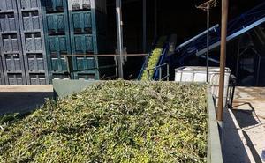 El documento de transporte de las frutas y hortalizas desde el campo a las comercializadoras entrará en vigor el día 15