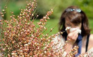 Científicos andaluces alertan de las alergias cruzadas, un riego creciente en las ciudades