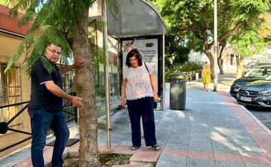 El PSOE denuncia carencias de limpieza y asfaltado en la barriada de Puya