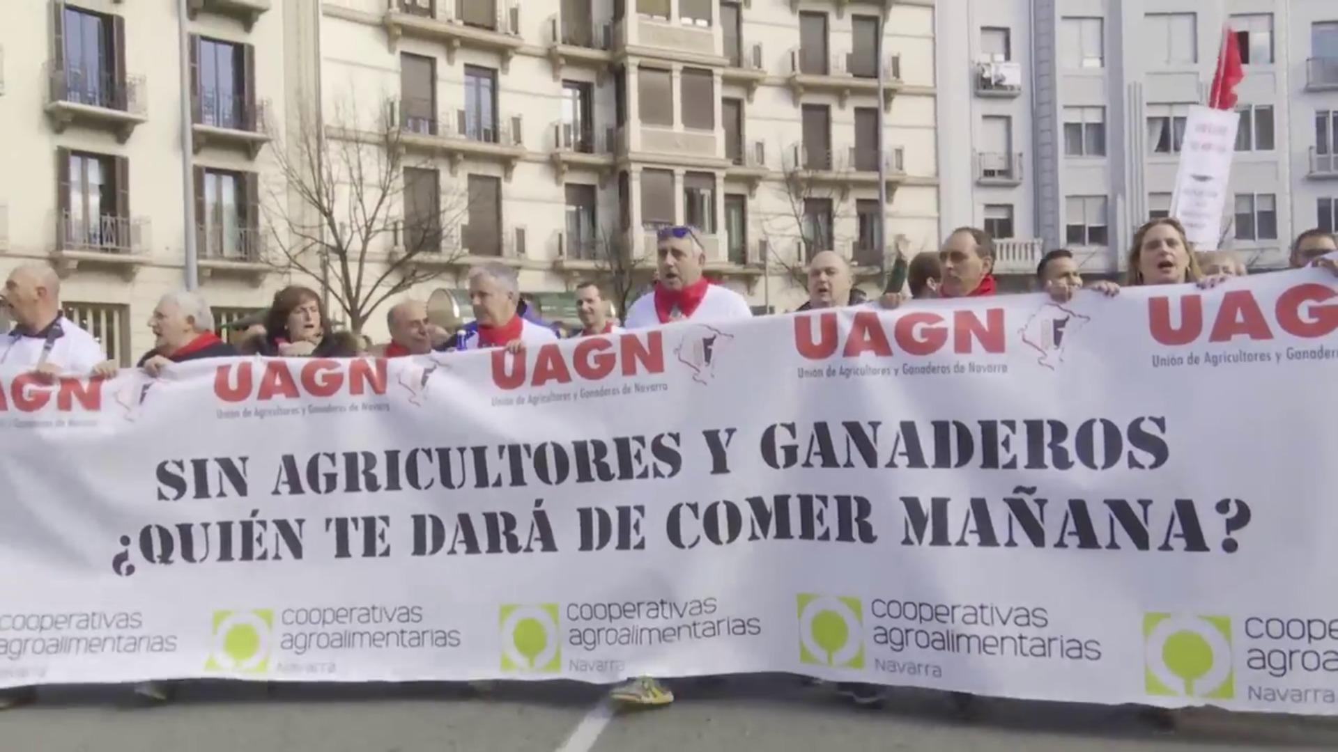 Agricultores y ganaderos se manifiestan en Pamplona y Granada