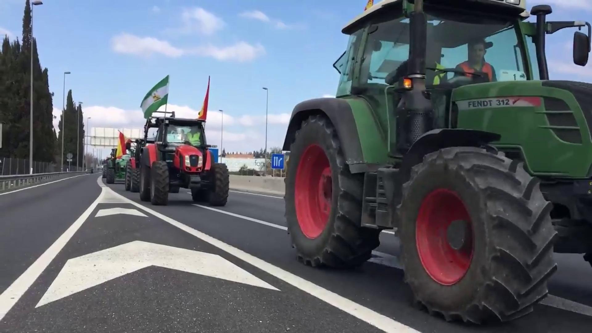 Una tractorada en protesta por el sector agrario atraviesa Granada
