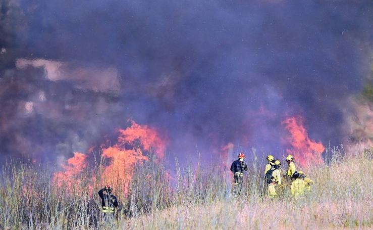 Incendio forestal en Benahavís