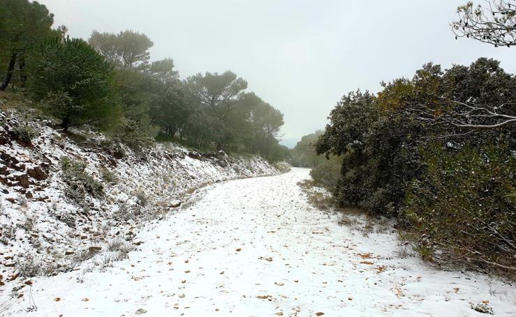 La nieve llega a la provincia de Málaga