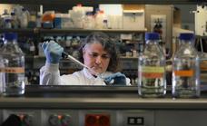 Identifican el primer biomarcador en sangre que distingue la miocarditis de un infarto agudo de miocardio