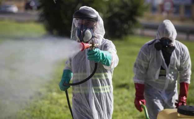 Fiebre del Nilo |  Los expertos en plagas advierten de un mayor riesgo de brotes que el año pasado