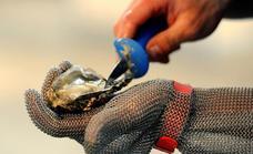 Europa cambia las medidas de higiene en los alimentos de origen animal