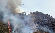 La extinción del incendio en Sierra Bermeja, «cada vez más cerca»