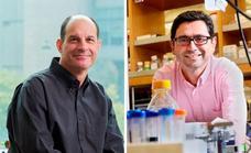 Nobel de Medicina para los científicos del dolor, la temperatura y el tacto