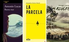 Tres viajes a la novela que parten de la poesía