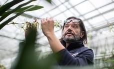 «Ignoramos que las plantas nos dan oxígeno y nos permiten vivir»