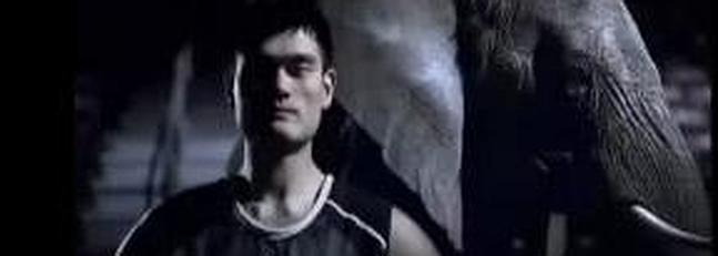 Yao Ming, contra las balas en defensa de los animales
