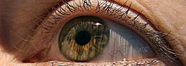 El 95% de los casos de ceguera por glaucoma podrían evitarse