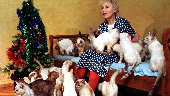 Acumular animales domésticos, un grave problema de salud pública