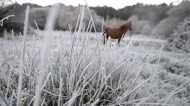 Diez provincias están en alerta amarilla por frío