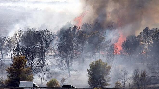 Controlado el fuego declarado en Torremolinos