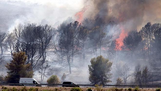 Un incendio sin víctimas ni desalojos desata la alarma en Torremolinos