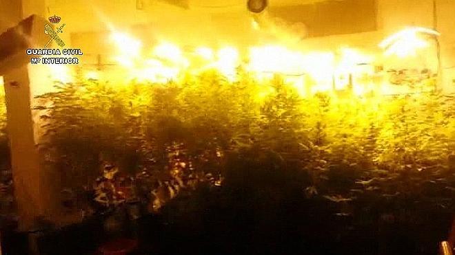 Once detenidos y 147 kilos de marihuana incautados en Málaga