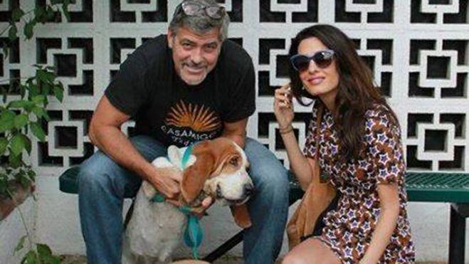 Los Clooney esperan gemelos para la primavera